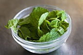 Fresh mint leaves in a dish