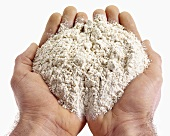 Hands holding wholemeal flour