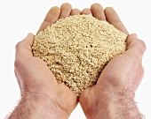 Hands holding wheat bran