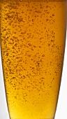 Ein Glas helles Bier