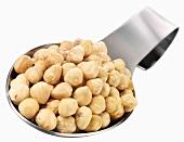 Shelled hazelnuts on a spoon