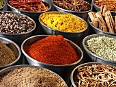 Assorted spices in metal dishes (India)