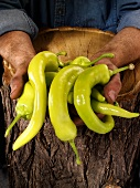 Man holding green chillies in both hands