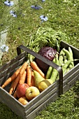 Fresh fruit and vegetables in a wooden basket on grass