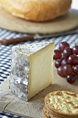 Gorwydd Caerphilly cheese from Wales with crackers & grapes
