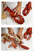 Disjointing a cooked lobster, cutting in half lengthways
