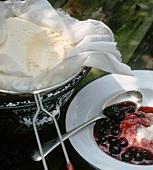 Blueberry dessert with cream cheese