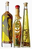 Drei Flaschen Pflanzenöl mit Kräutern, Gewürzen aromatisiert