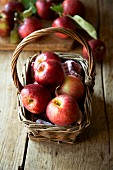 Freshly picked red apples in a wicker basket