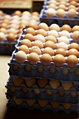 Eggs in egg trays
