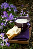 Leek & pea chowder with white bread in garden with crocuses