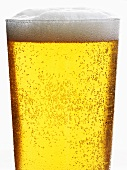 Glass of beer, lager (detail)