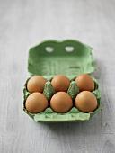 Eier in der Eierschachtel