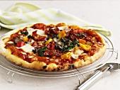 Gemüsepizza auf Kuchengitter