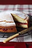 Sponge cake with jam filling