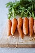 Fresh carrots on chopping board
