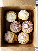Several cupcakes in a box (overhead view)