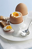 Boiled eggs with buttered toast soldiers