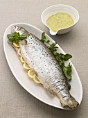 Salmon trout with lemon slices and herb sauce