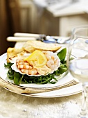 Salmon and prawns in shell (Christmas)