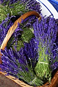 Bunches of lavender in a basket