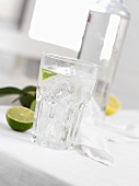 A gin and tonic with lime