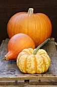 A giant pumpkin and winter squash