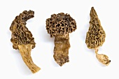 Three morels