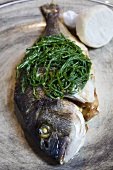 Fried sea bass with rock samphire
