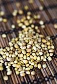 Coriander seeds on a bamboo mat