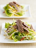 Beef salad with sprouts (Thailand)