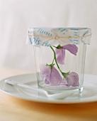 Pale pink flowers in jam jar