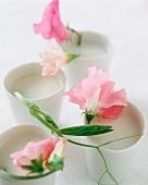 Buttermilchsuppe in Bechern mit Blüten dekoriert