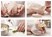 Herbs being stuffed under the skin of a chicken