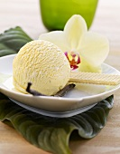 Vanilla ice cream, wafers and an orchid flower