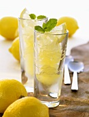 Lemon granita with mint leaves