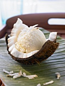 Coconut ice cream in a coconut shell