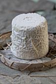 Chabichou goat's cheese