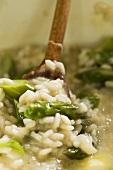 Risotto asparagi e cerfoglio (asparagus and chervil risotto, Italy)