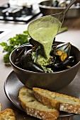Cozze aglio e prezzemolo (mussels with garlic)