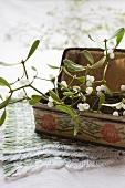 Mistletoe sprigs in an old tin box
