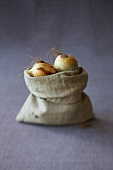 Onions in a jute sack