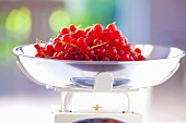 Redcurrants on a kitchen scale