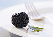 A blackberry and a blackberry leaf on a plate