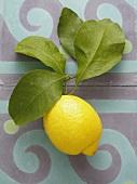 Eine Zitrone mit Blättern