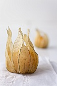 Closed physalis