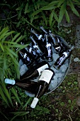 Ice bucket with cola and wine bottles in a garden