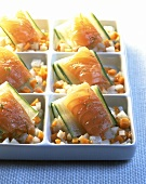 Salmon-vegetable snacks