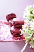 Macaroons with cherry jam