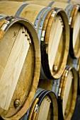 Wein lagert in Holzfässern (Weingut Chateau Lynch-Bages, Frankreich)